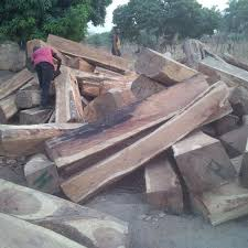TIMBER CONTRACTOR MURDERED AT GIRLFRIEND'S HOUSE IN KOGI